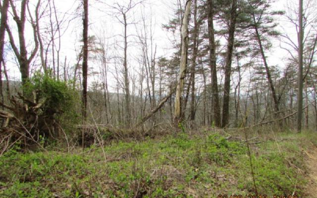 15 Whisenant Mountain, Ellijay, GA 30540 (MLS #276082) :: Path & Post Real Estate