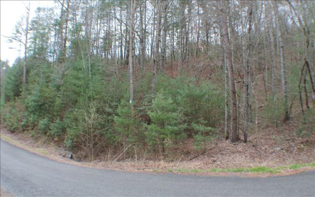 Red Oak Trail, Ellijay, GA 30540 (MLS #276274) :: RE/MAX Town & Country