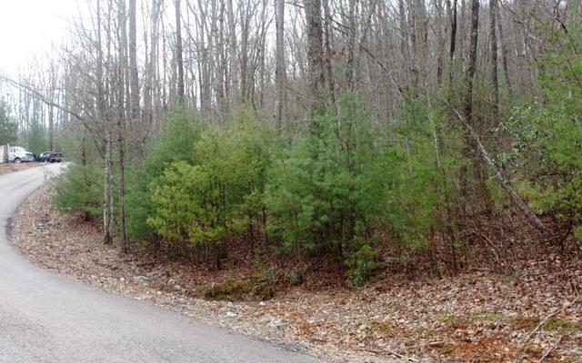 LT 10 Scouts Ridge, Morganton, GA 30512 (MLS #276280) :: RE/MAX Town & Country