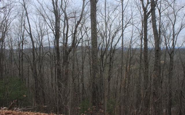 LT 20 Scouts Ridge, Morganton, GA 30512 (MLS #276283) :: RE/MAX Town & Country