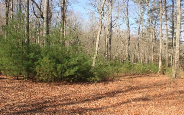 LT 4 Scouts Ridge, Morganton, GA 30512 (MLS #276285) :: RE/MAX Town & Country