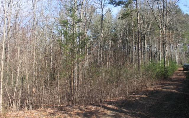 LT 3 Scouts Ridge, Morganton, GA 30512 (MLS #276286) :: RE/MAX Town & Country
