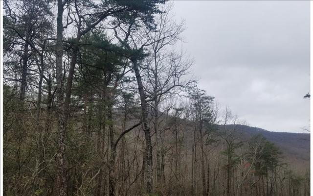 LT349 Mountainside Pkwy, Ellijay, GA 30536 (MLS #276330) :: RE/MAX Town & Country