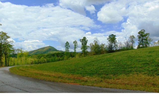 LOT 6 Blue Ridge Skyport, Blue Ridge, GA 30513 (MLS #276382) :: RE/MAX Town & Country