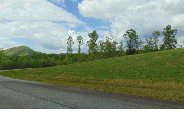 LOT 7 Blue Ridge Skyport, Blue Ridge, GA 30513 (MLS #276383) :: RE/MAX Town & Country