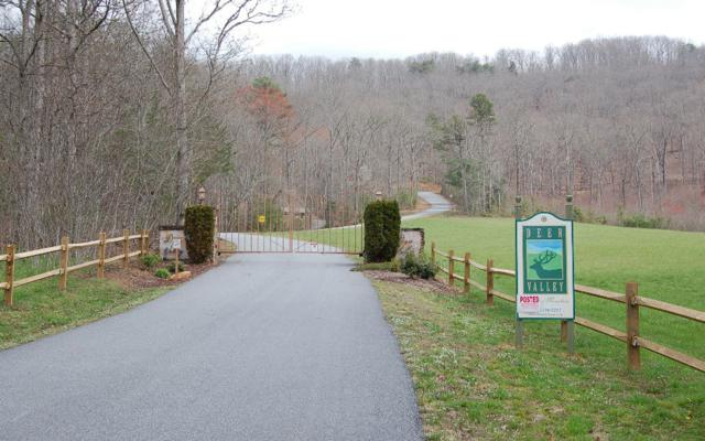 Deer Valley Lot 8,8A, Warne, NC 28909 (MLS #276399) :: RE/MAX Town & Country