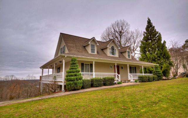 820 Talona Mountain Rd, Ellijay, GA 30536 (MLS #276410) :: RE/MAX Town & Country