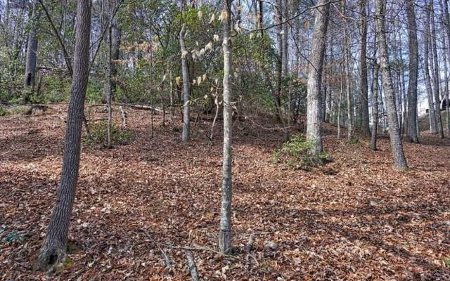 LT 9A Riverbend, Blairsville, GA 30512 (MLS #276436) :: RE/MAX Town & Country