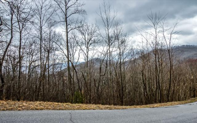 LT 22 Overlook At Yh, Young Harris, GA 30582 (MLS #276498) :: RE/MAX Town & Country