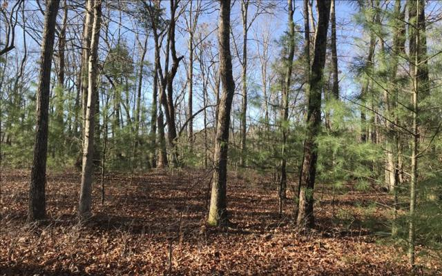 LT 42 Arrowood Point, Blairsville, GA 30512 (MLS #276536) :: RE/MAX Town & Country