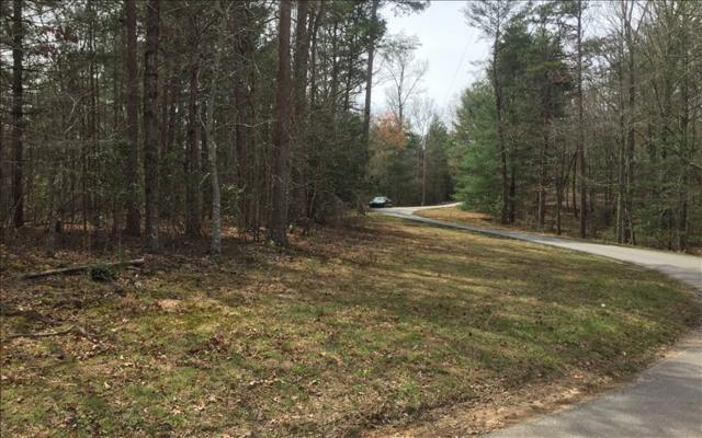 LOT 2 Cozy Cove Road, Blairsville, GA 30512 (MLS #276544) :: RE/MAX Town & Country