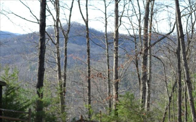 9A Hickory Dr, Mineral Bluff, GA 30559 (MLS #276550) :: RE/MAX Town & Country