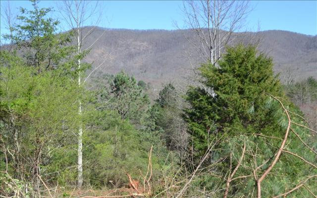 359 Mccallister Rd, Copperhill, TN 37317 (MLS #276552) :: RE/MAX Town & Country