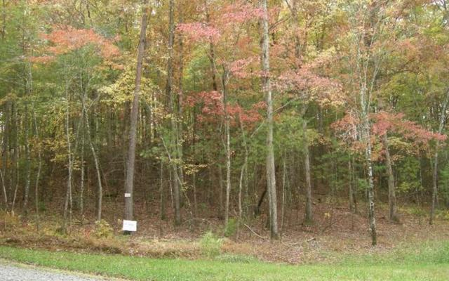 # 18 Pickett Mill Lane, Ellijay, GA 30540 (MLS #276556) :: RE/MAX Town & Country