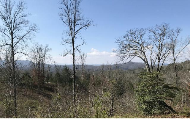 17 Lunar Trace, Murphy, NC 28906 (MLS #276616) :: RE/MAX Town & Country