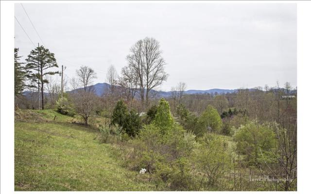 621 Nicely Road, Hayesville, NC 28904 (MLS #276642) :: RE/MAX Town & Country