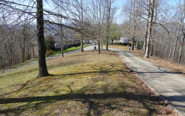 42A Eagles View Drive, Hayesville, NC 28904 (MLS #276776) :: RE/MAX Town & Country