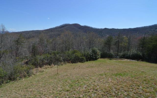 LT 15 Smokerise, Hayesville, NC 28904 (MLS #276819) :: RE/MAX Town & Country