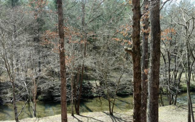 1918 Creekstone Lane, Young Harris, GA 30582 (MLS #276827) :: RE/MAX Town & Country