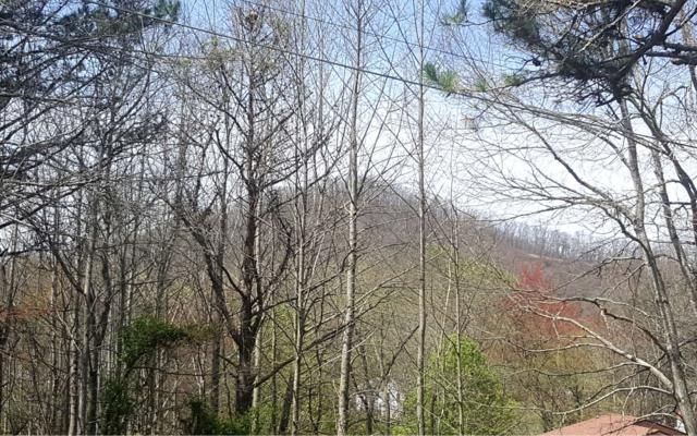 LT57 Chatuge Hills, Hayesville, NC 28904 (MLS #276935) :: RE/MAX Town & Country