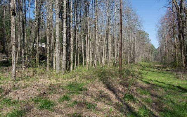 Rodger Creek Road, Ellijay, GA 30540 (MLS #276949) :: RE/MAX Town & Country