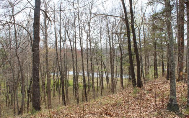 #59 Yonah Way, Blairsville, GA 30512 (MLS #276982) :: RE/MAX Town & Country
