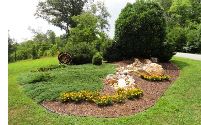 LOT 1 Travis Ridge, Blairsville, GA 30512 (MLS #277037) :: RE/MAX Town & Country