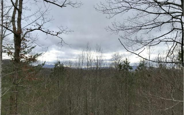 1.86 Winchester Cove, Hayesville, NC 28904 (MLS #277043) :: RE/MAX Town & Country