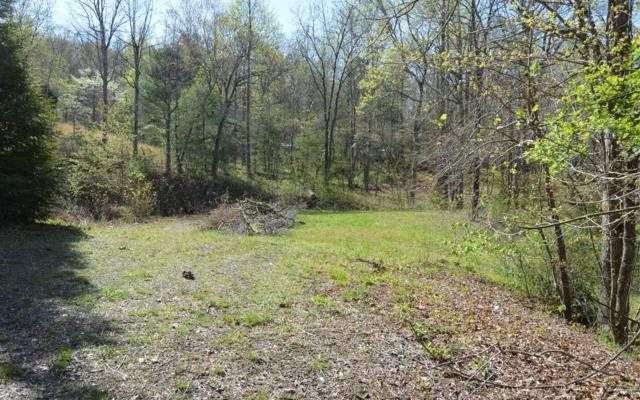 #35A Dan Knob, Hayesville, NC 28904 (MLS #277099) :: RE/MAX Town & Country