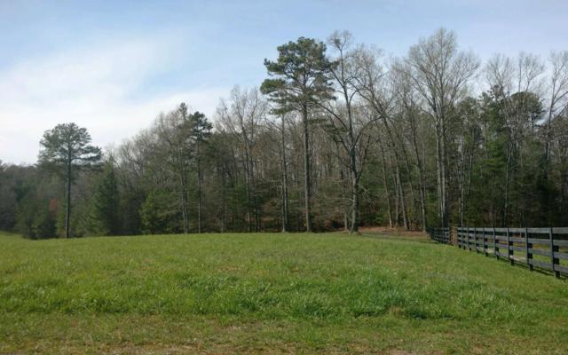 LT 6 Spring Camp Road, Ellijay, GA 30536 (MLS #277105) :: RE/MAX Town & Country