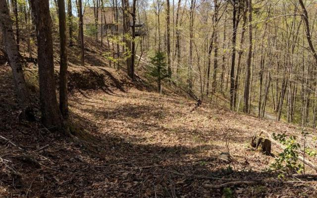 00 Moccasin Trail, Murphy, NC 28906 (MLS #277198) :: RE/MAX Town & Country