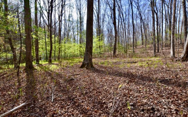 LT 13 Bear Tracks, Mineral Bluff, GA 30559 (MLS #277240) :: RE/MAX Town & Country