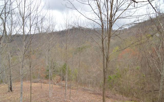 L 86A Dan Knob, Hayesville, NC 28904 (MLS #277249) :: RE/MAX Town & Country