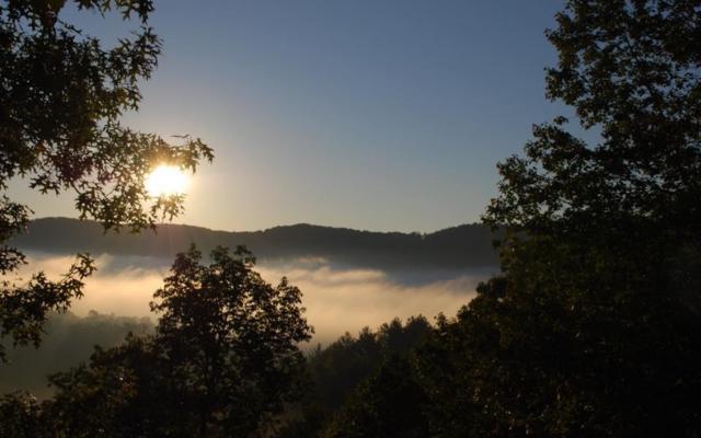 28 Arrowhead Leap, Blue Ridge, GA 30513 (MLS #277268) :: RE/MAX Town & Country