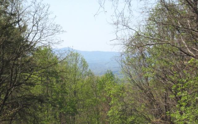 LOT 47 Burnt Mountain Road, Ellijay, GA 30536 (MLS #277275) :: RE/MAX Town & Country