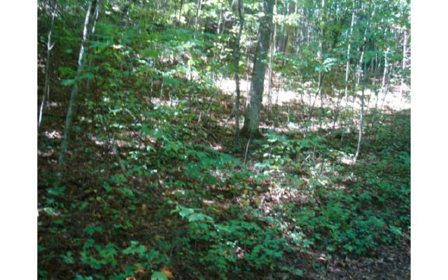LT 27 River Trace, Blairsville, GA 30512 (MLS #277397) :: RE/MAX Town & Country