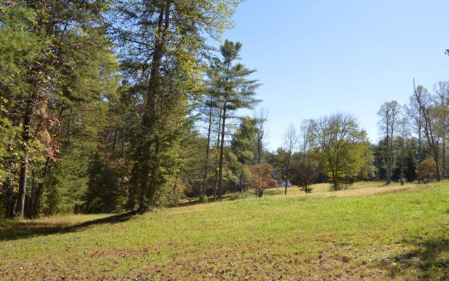 Whistle Pig Place, Blairsville, GA 30512 (MLS #277400) :: RE/MAX Town & Country