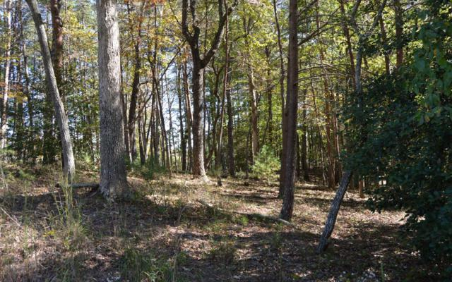 Whistle Pig Terrace, Blairsville, GA 30512 (MLS #277401) :: RE/MAX Town & Country