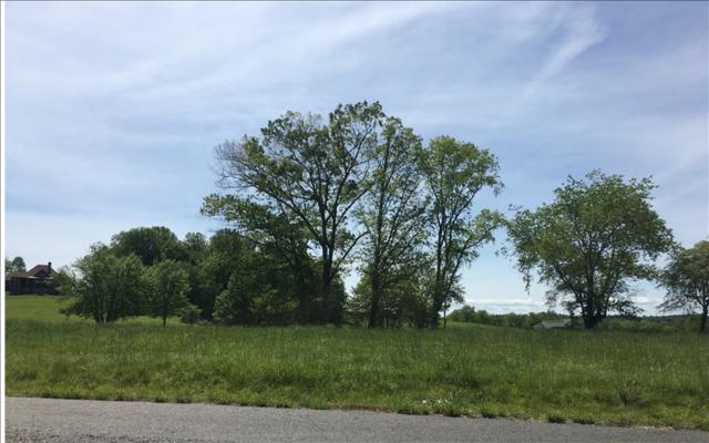 LT157 Owen Glen, Blairsville, GA 30512 (MLS #277413) :: RE/MAX Town & Country
