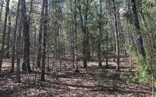 7 Deer Forest S/D, Blairsville, GA 30512 (MLS #277447) :: RE/MAX Town & Country