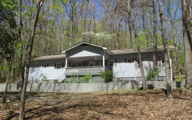 4444 Rock Creek Rd., Hiawassee, GA 30546 (MLS #277454) :: RE/MAX Town & Country