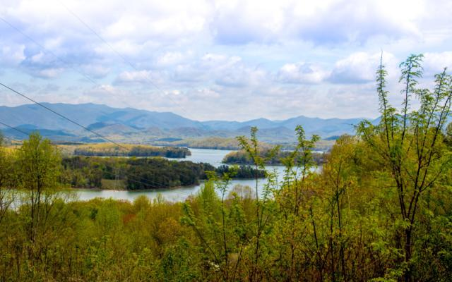 LOT12 Lake Forest View Dri, Hiawassee, GA 30546 (MLS #277488) :: RE/MAX Town & Country