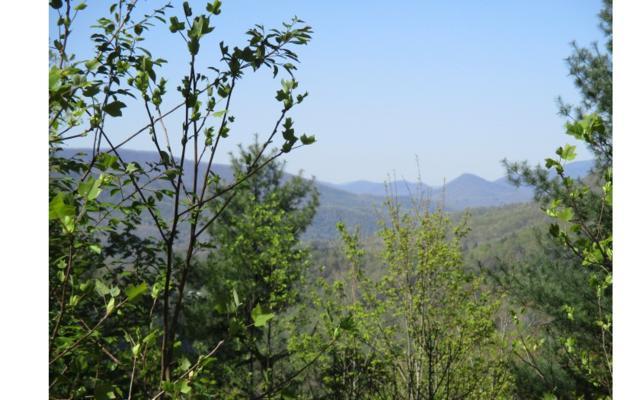 LT 13 Whisper Woods, Hiawassee, GA 30546 (MLS #277493) :: RE/MAX Town & Country