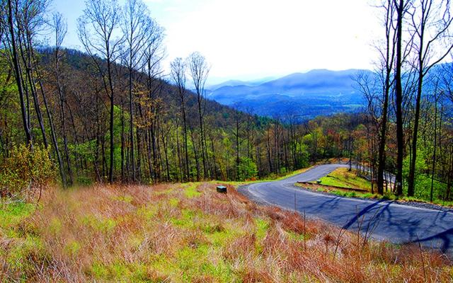 23 The Overlook At Yh, Young Harris, GA 30582 (MLS #277504) :: RE/MAX Town & Country