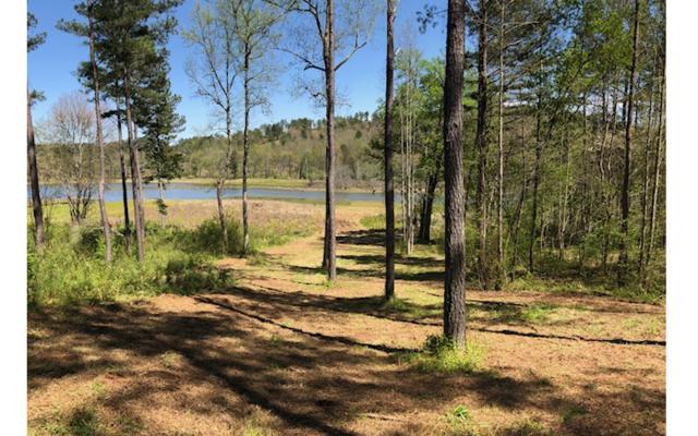 LT121 Sandy Lake Lane, Blairsville, GA 30512 (MLS #277518) :: RE/MAX Town & Country