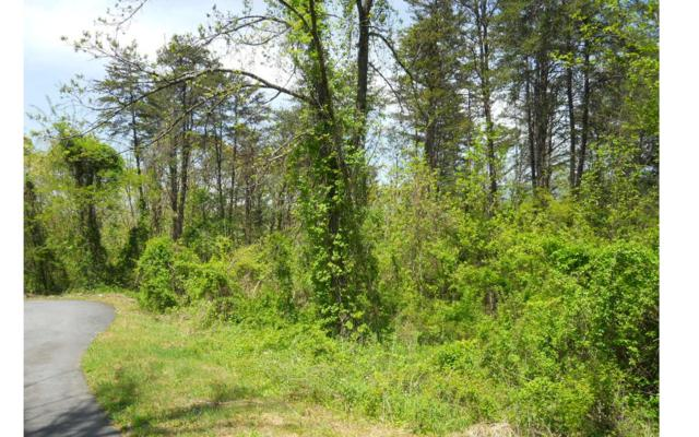 P7 Majestic Drive Ct, Hayesville, NC 28904 (MLS #277608) :: RE/MAX Town & Country