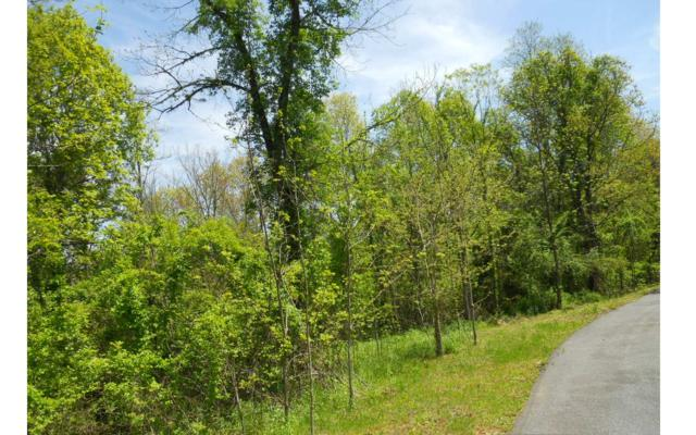 P8 Majestic Drive Ct, Hayesville, NC 28904 (MLS #277610) :: RE/MAX Town & Country