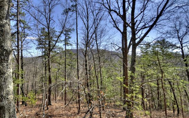 LT 17 Stuart Highlands, Mineral Bluff, GA 30559 (MLS #277651) :: RE/MAX Town & Country