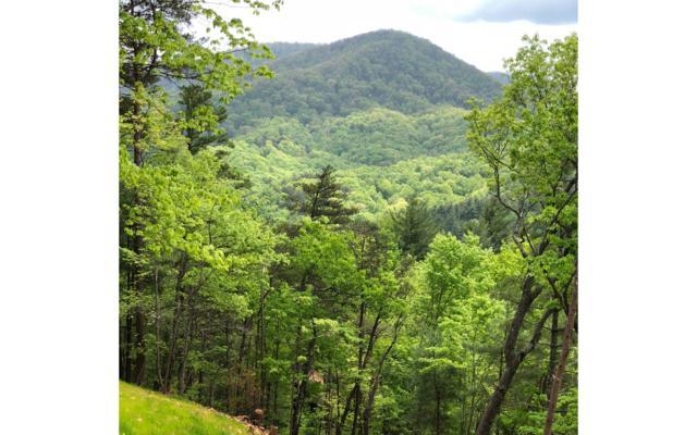 108 Little Rock Cr Path, Cherry Log, GA 30540 (MLS #277663) :: RE/MAX Town & Country