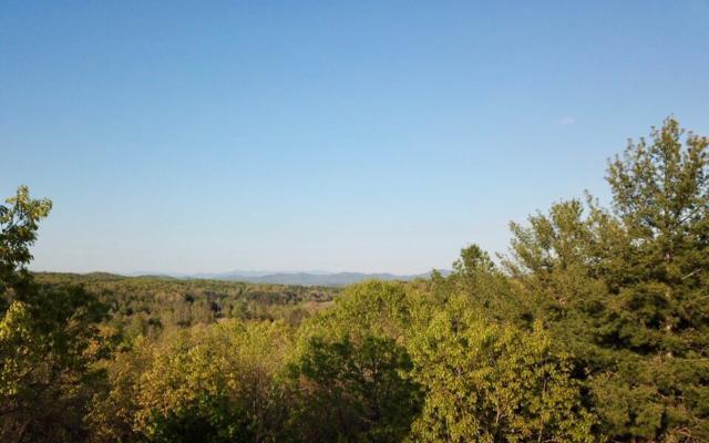 LT 8 Birchwood Trails, Morganton, GA 30560 (MLS #277669) :: RE/MAX Town & Country